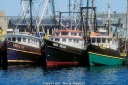 MROC-120-Three-fishing-docked-boats-in-Gloucester-Harbor