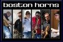 bostonhorns