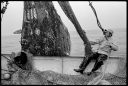 Hauling-Back-Nets-Joseph-Lucia-II-GeorgesBank-1980